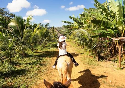 Excursie paardrijden door de vallei van viñales Cuba