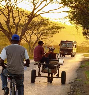 Transporte en los campos cubanos la Cuba profunda. viajar a Cuba. Agencia CubaNeo Travel