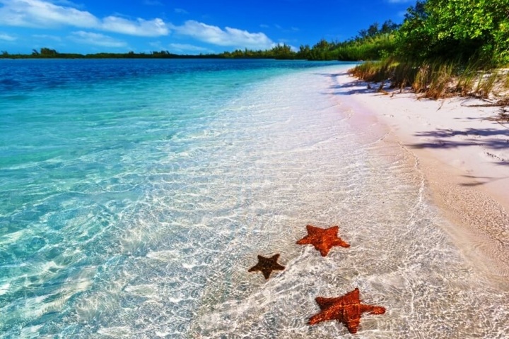 Viajar a Cuba Cayo Levisa CubaNeo Travel