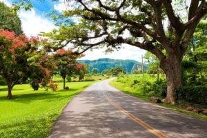 La naturaleza y el clima de Cuba
