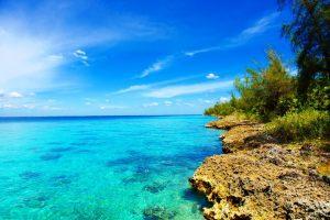Playa Larga Lugares turisticos de Cuba Playa Giron CubaNeo Travel