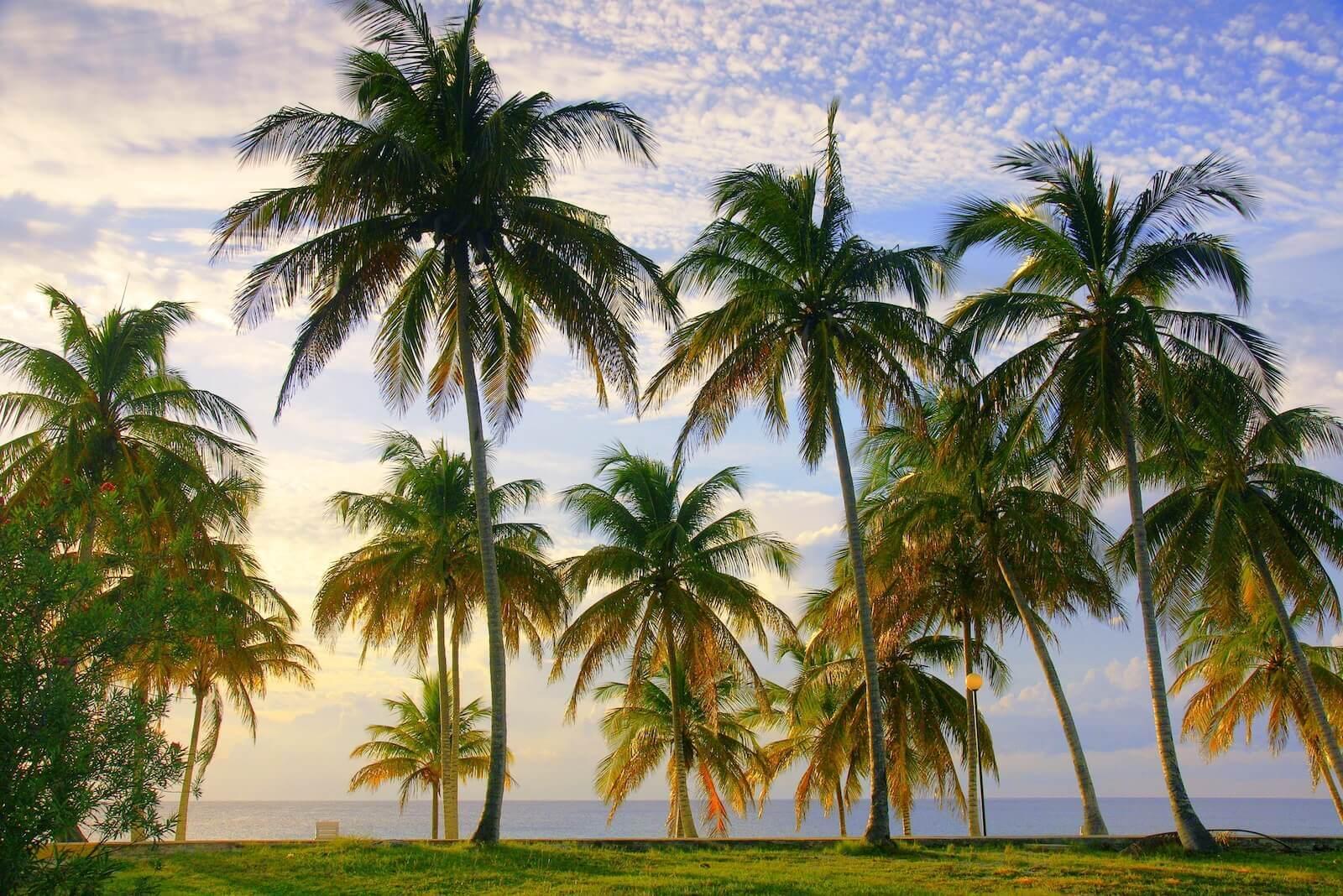 Beste reistijd Cuba